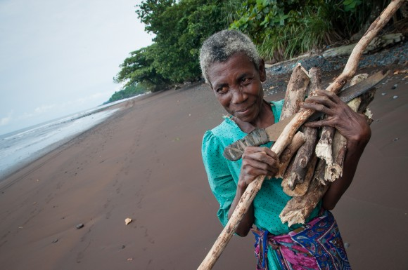 Old woman gathering wood