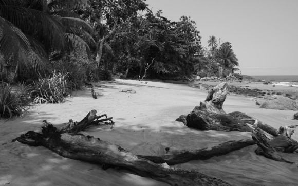 Beaches of Kribi